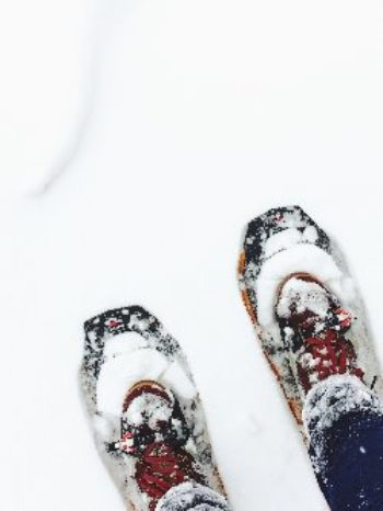snowshoe250X333