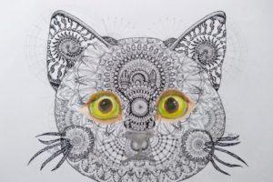 曼荼羅猫2