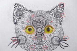 曼荼羅猫2 2