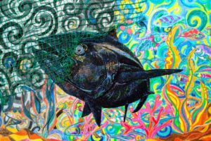 bluefin tuna 1